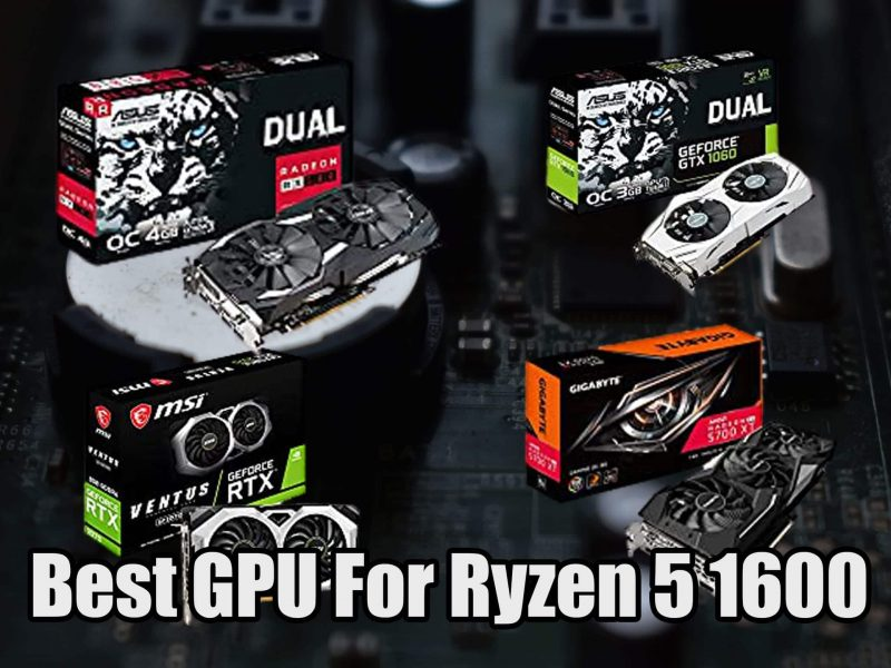 Best GPU For Ryzen 5 1600